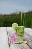 Sassi-Wasser in einem Glas Lizenzfreie Stockfotografie