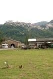 Sassocorvaro (Montefeltro) - ciudad y gallinas Fotos de archivo libres de regalías