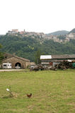 Sassocorvaro (Montefeltro) - Town and hens. Sassocorvaro (Montefeltro, Urbino, Marches, Italy) - Town at top of the hill and hens royalty free stock photos