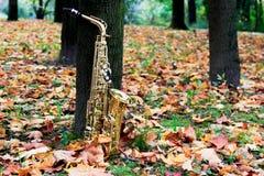 Sassofono del negativo per la stampa di cartamoneta nel parco di autunno Immagini Stock
