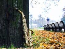 Sassofono del negativo per la stampa di cartamoneta nel parco di autunno Fotografia Stock Libera da Diritti
