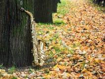 Sassofono del negativo per la stampa di cartamoneta nel parco di autunno Immagine Stock