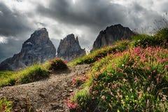 Sassolungo & Sassopiatto mountain ranges as seen from Passo Sella on a cloudy afternoon, Dolomites, Trentino, Alto Adige Stock Image