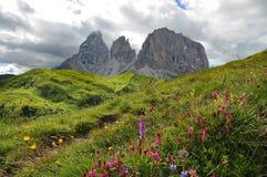 Sassolungo & Sassopiatto mountain ranges as seen from Passo Sella on a cloudy afternoon, Dolomites, Trentino, Alto Adige. Italy stock photography