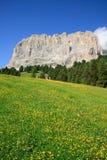 Sassolungo - Val Gardena Stock Image
