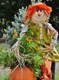 Sassy Sally Scarecrow royaltyfri foto