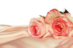 Satén y rosas rosados Imagen de archivo libre de regalías