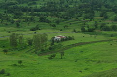 Satara Green meadows Stock Image