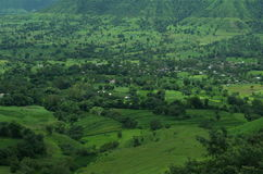 Satara Green meadows Stock Image