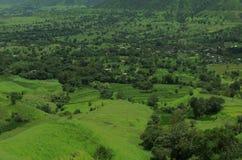 Satara Green meadows Royalty Free Stock Images