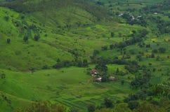 Satara wioski łąki w monsunie Zdjęcia Royalty Free