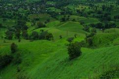 Satara wioski łąki w monsunie Obraz Royalty Free
