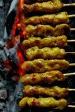 Satay; carne en los palillos de bambú finos Imagen de archivo libre de regalías