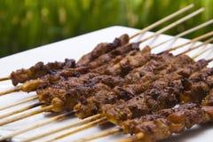 Satay de vleespenperspectief van de kip Royalty-vrije Stock Foto's