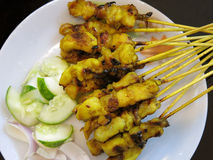 SATAY Stock Photography