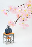 Satchel and cherry blossoms on white background. Royalty Free Stock Photos