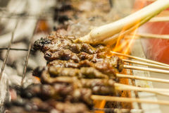 Sate Royalty Free Stock Photo