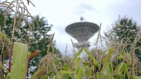 Satelitarny szyk przy centrum Astronautyczna komunikacja przez pola uprawnego zbiory