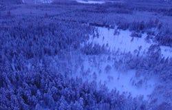 Satellietbeeld of hoogste mening van de winterbos, pijnboomboom met behandelde sneeuw De achtergrond van de winter royalty-vrije stock afbeeldingen