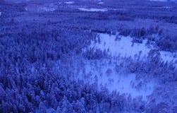 Satellietbeeld of hoogste mening van de winterbos, pijnboomboom met behandelde sneeuw De achtergrond van de winter stock fotografie
