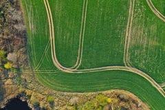 Satellietbeeld op groen tarwegebied dat door gebogen vrachtwagensporen wordt verdeeld royalty-vrije stock foto