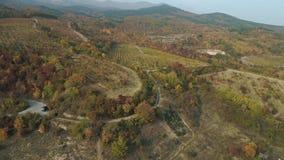Satellietbeeld op mooi oranje en rood de herfstvallei en bos met landweg en auto die dichtbij parkeert stock video