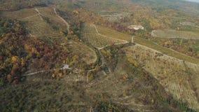 Satellietbeeld op mooi oranje en rood de herfstvallei en bos met landweg en auto die dichtbij parkeert stock footage