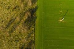 Satellietbeeld op verdeeld gebied van groene landbouwgebied en weide met struik en bomen stock afbeelding