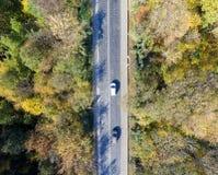 Satellietbeeld over auto die door kleurrijk bos reizen stock fotografie
