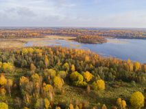 Satellietbeeld over bos tijdens trillende de herfstkleuren Satellietbeeld van kust met steen Kustlijn met zand en water Luchtdr. royalty-vrije stock afbeeldingen