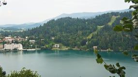 Satellietbeeld van Afgetapt Meer, Afgetapt Julian Alps en huizen, Slovenië stock afbeeldingen