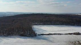 Satellietbeeld van Amish-Landbouwgrond in Pennsylvania stock video