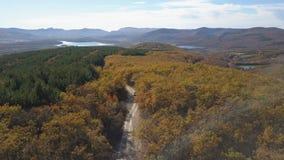 Satellietbeeld van auto het drijven door het bos in bergen Het drijven op mooie bergweg in de herfst lucht stock video