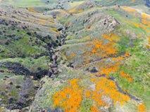 Satellietbeeld van Berg met de Gouden Papaver van Californië en Goudvelden die in Walker Canyon, Meer Elsinore, CA bloeien De V.S royalty-vrije stock foto