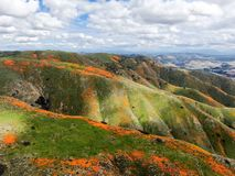 Satellietbeeld van Berg met de Gouden Papaver van Californië en Goudvelden die in Walker Canyon, Meer Elsinore, CA bloeien De V.S royalty-vrije stock fotografie