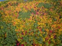 Satellietbeeld van Canadees Landschap tijdens Dalingsseizoen stock foto's
