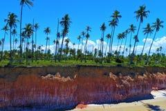 Satellietbeeld van Cumuruxatiba-strand, Prado, Bahia, Brazilië royalty-vrije stock afbeeldingen