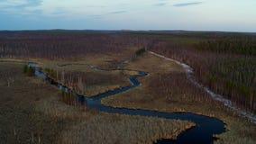 Satellietbeeld van de rivier in de vorm van een slang op het gebied stock footage