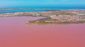 Satellietbeeld van de zoute vijvers van de zeewaterverdamping met roze kleur stock video