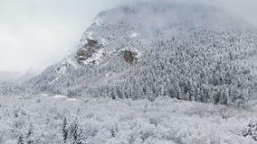 Satellietbeeld van een de winterbos op een bewolkte dag Een mooie de winteraard van sparren en pijnboom in de sneeuw van een berg stock footage