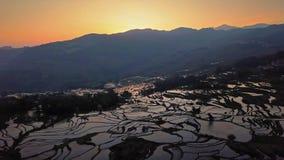 Satellietbeeld van een hommel van rijstterras bij zonsopgang, Yuanyang, China stock video
