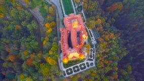 Satellietbeeld van een stad in Polen - het noorden van het land - een kasteel in het midden van het bos die - de bomen en beautif royalty-vrije stock afbeelding
