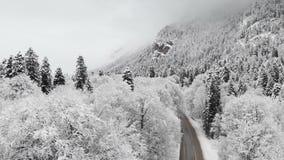 Satellietbeeld van een weg in een de winterbos op een bewolkte dag Een mooie de winterweg onder de aard van sparren en pijnboom b stock videobeelden