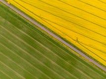 Satellietbeeld van gele canola en groene die korrelgebieden door een landweg wordt verdeeld stock foto
