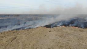 Satellietbeeld van het branden van droog gras op het gebied, pan Ramp en noodsituatiegebeurtenissen, negatief gevolg op aard stock video