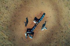 Satellietbeeld van landelijke scène met koeien en paarden op het gebied stock afbeelding