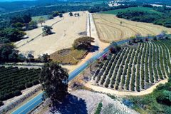 Satellietbeeld van landelijke weg met gekleurde bloemen en bomen royalty-vrije stock foto