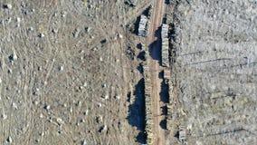 Satellietbeeld van ontbossing Bos die worden verwijderd om houten te maken stock videobeelden