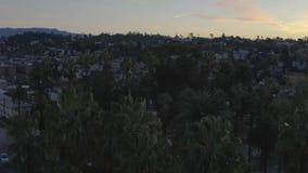 Satellietbeeld van palmen die heuvels en huizen rollen bij Silverlake-buurt dichtbij Echo Park in Los Angeles, Californië stock videobeelden