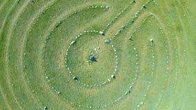Satellietbeeld van steencirkels stock videobeelden